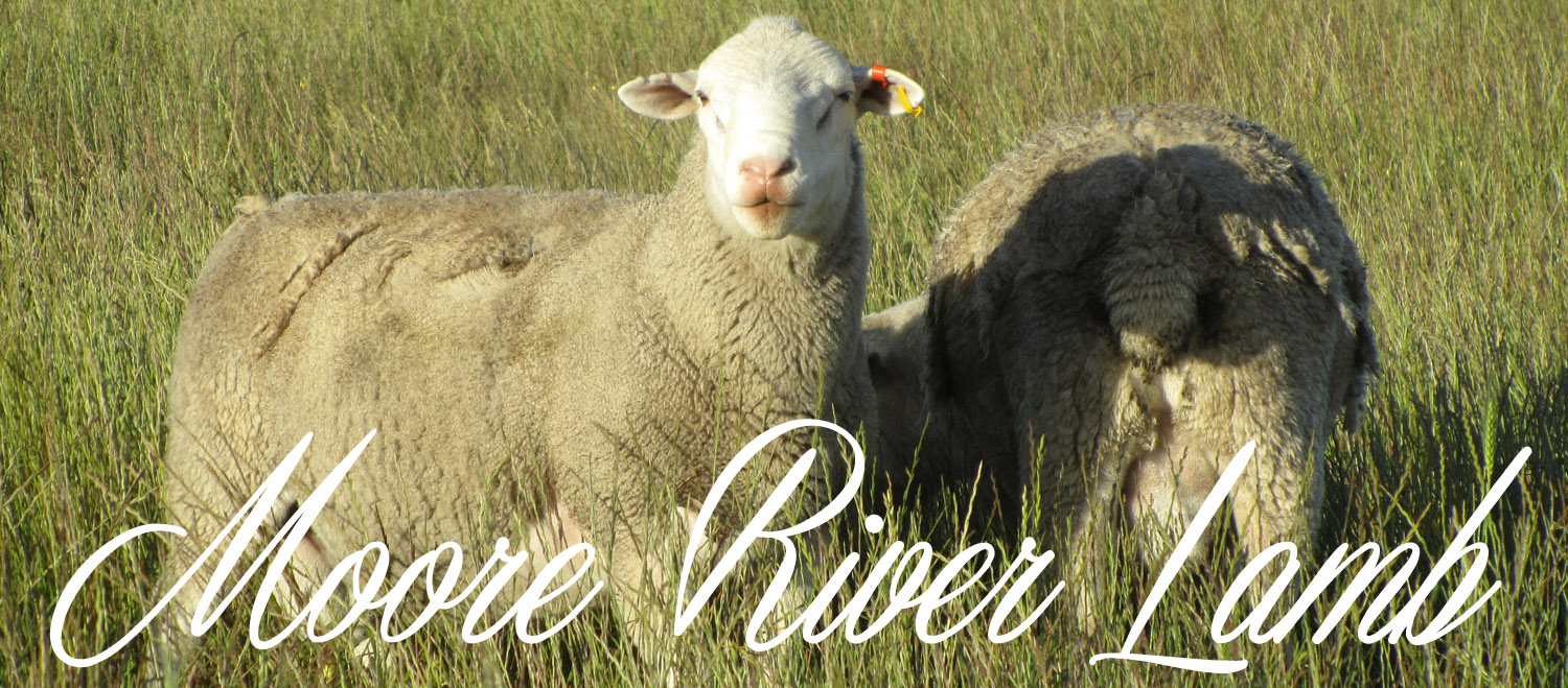 Moore River Lamb...Grass raised and grass finished Organically-grown lamb.